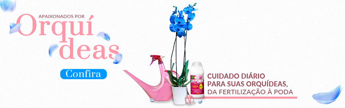 Banner Orquídeas